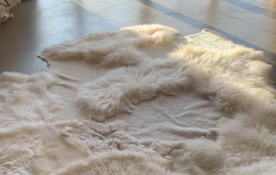 Carine Boxy unieke tapijten van dierenhuiden